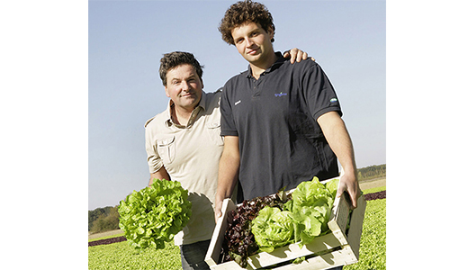 Farmer finds a growing market for fresh lettuce